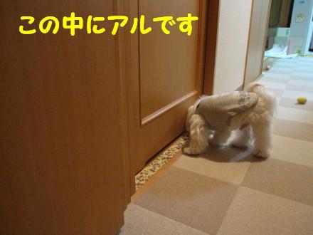 b0193480_13473541.jpg