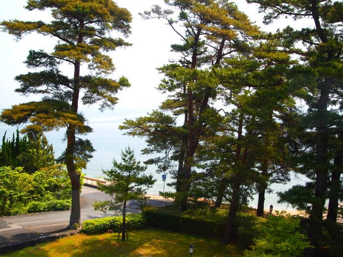 琵琶湖と浮御堂_a0258686_2015045.jpg