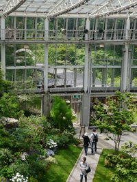 花フェスタ記念公園④_b0142989_21553429.jpg