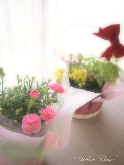 贈り物と家族へのありがとう_a0157409_1921229.jpg