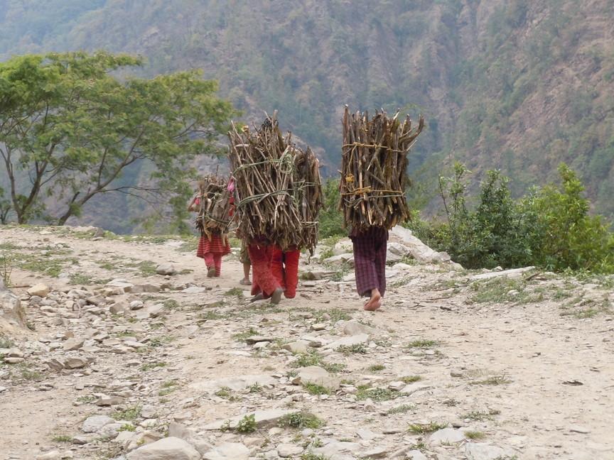 2012年5月 I Love Nepal. ネパールヒマラヤ再訪記(ランタン谷トレッキング)No.2_c0219616_2155314.jpg