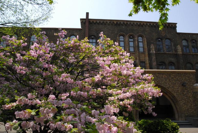 2012年5月 春の北大キャンパス_c0219616_22545519.jpg