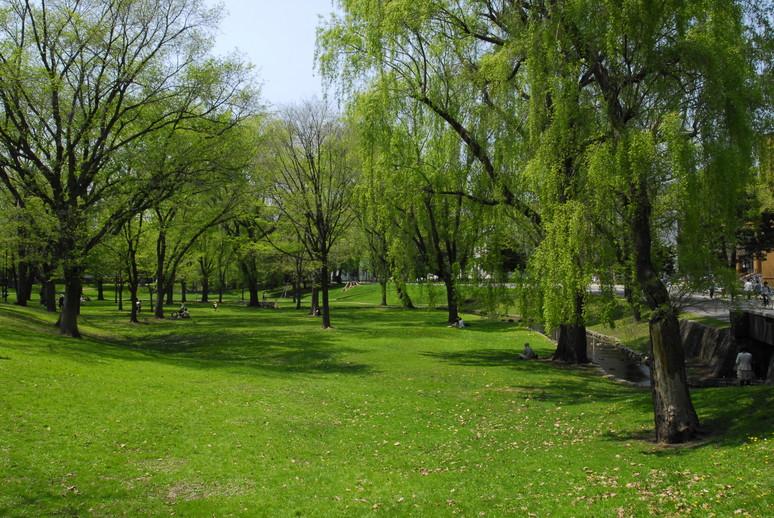 2012年5月 春の北大キャンパス_c0219616_22562098.jpg