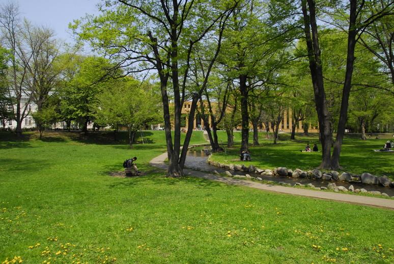 2012年5月 春の北大キャンパス_c0219616_225774.jpg