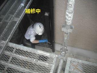 塗装工事11.5日目_f0031037_18295144.jpg