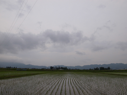 夕暮れに雨が激しく_a0014840_22371416.jpg