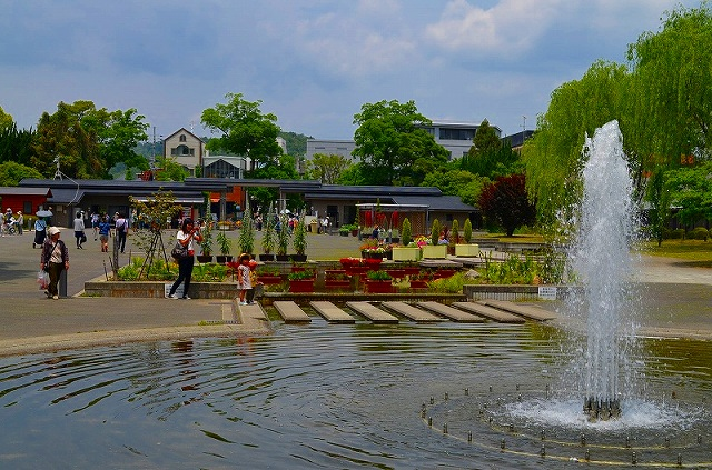 【花の祭典(紹介)】京都府立植物園_e0237645_17433165.jpg