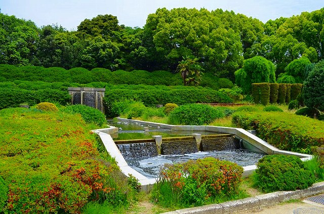 【花の祭典(紹介)】京都府立植物園_e0237645_17462197.jpg