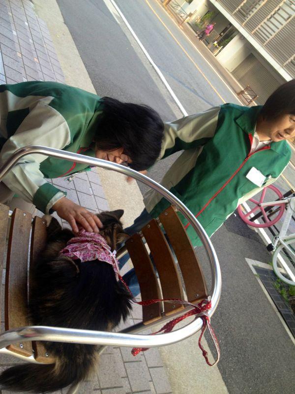 テラスでマッタリ☆_c0151965_12411436.jpg