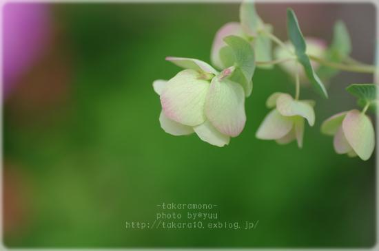 f0111908_07077.jpg
