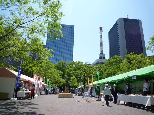 森林(もり)の市 THE FINAL_f0207410_18463868.jpg