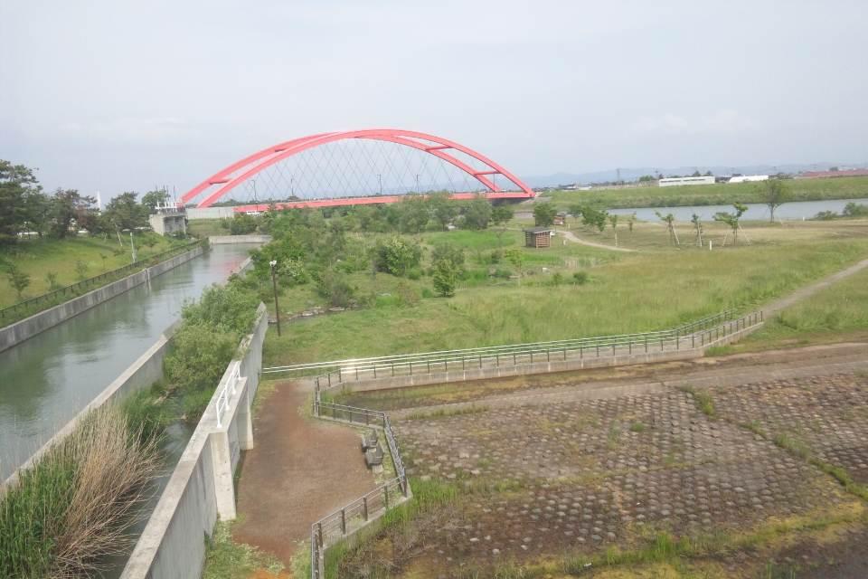 大河津分水の公園の草刈り_b0237229_8113942.jpg