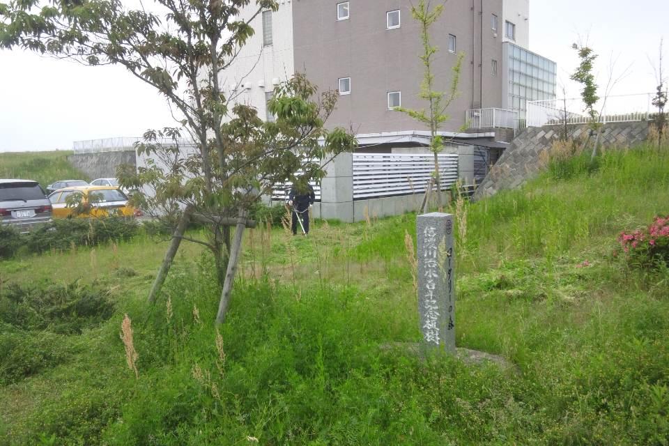 大河津分水の公園の草刈り_b0237229_812228.jpg