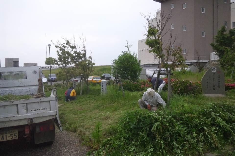 大河津分水の公園の草刈り_b0237229_812974.jpg
