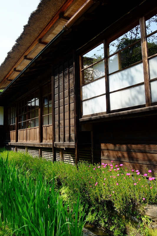 鎌倉 海像寺_f0050534_8322160.jpg