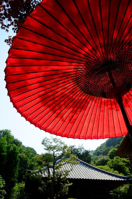 鎌倉 海像寺_f0050534_8322397.jpg
