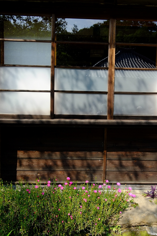 鎌倉 海像寺_f0050534_8324457.jpg
