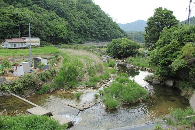 高下橋から、風呂之本へ通じる、熊野川沿いの里道を歩く_b0095061_14301622.jpg
