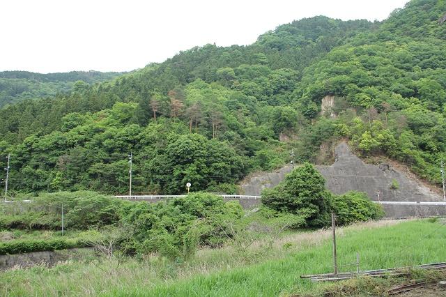 高下橋から、風呂之本へ通じる、熊野川沿いの里道を歩く_b0095061_14321029.jpg