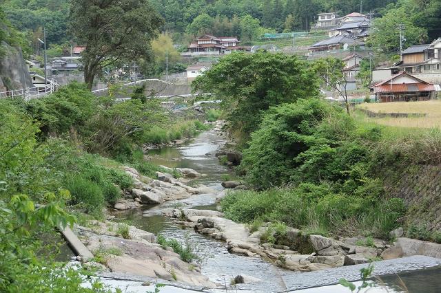 高下橋から、風呂之本へ通じる、熊野川沿いの里道を歩く_b0095061_14331124.jpg