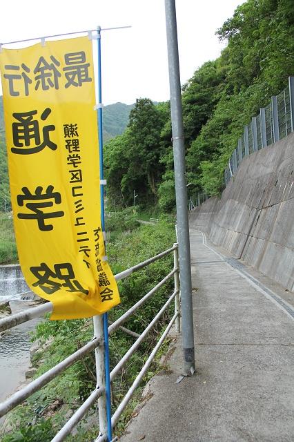 高下橋から、風呂之本へ通じる、熊野川沿いの里道を歩く_b0095061_14341639.jpg