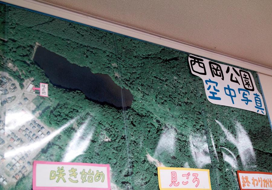 西岡公園(札幌市豊平区)_c0223825_1462785.jpg