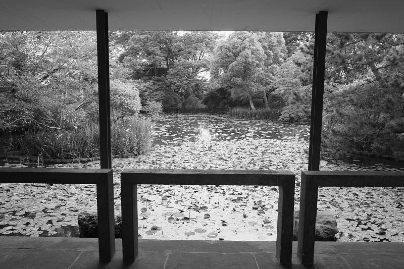神奈川県立近代美術館  鎌倉_f0050534_7111381.jpg