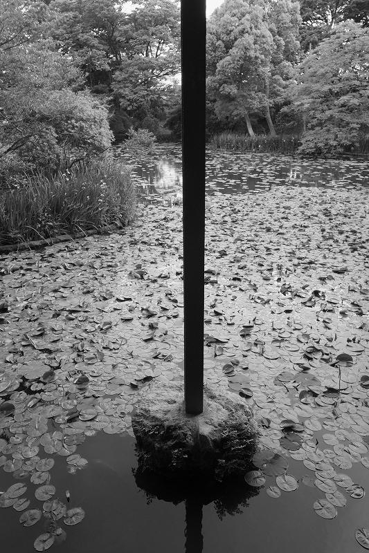 神奈川県立近代美術館  鎌倉_f0050534_7114322.jpg