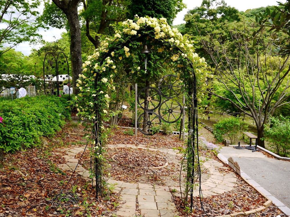 和歌山県植物公園緑花センター _b0093754_21255919.jpg