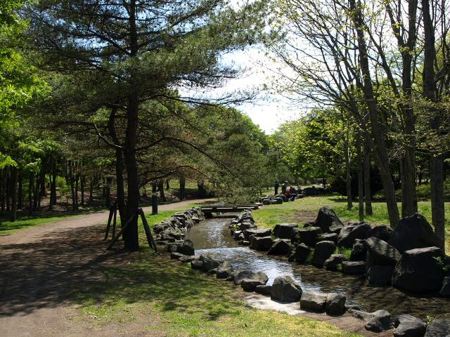 市民文化公園 5月_d0153062_826835.jpg