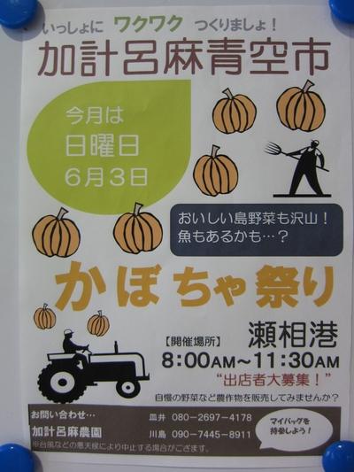 加計呂麻青空市_b0177163_17285980.jpg
