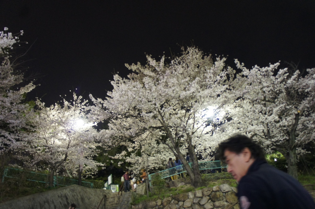 JapanDiary@BerlinVol.5 神戸◯◯◯!_c0180686_17293140.jpg