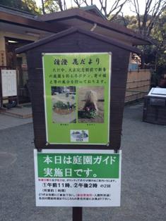 Y子のちょいと庭園めぐり~清澄庭園_b0172896_8414944.jpg