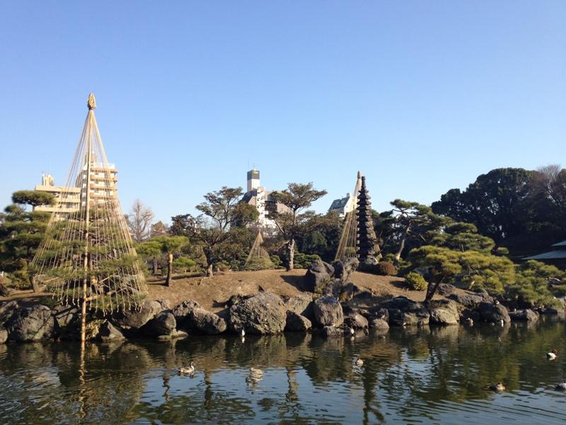 Y子のちょいと庭園めぐり~清澄庭園_b0172896_8433096.jpg