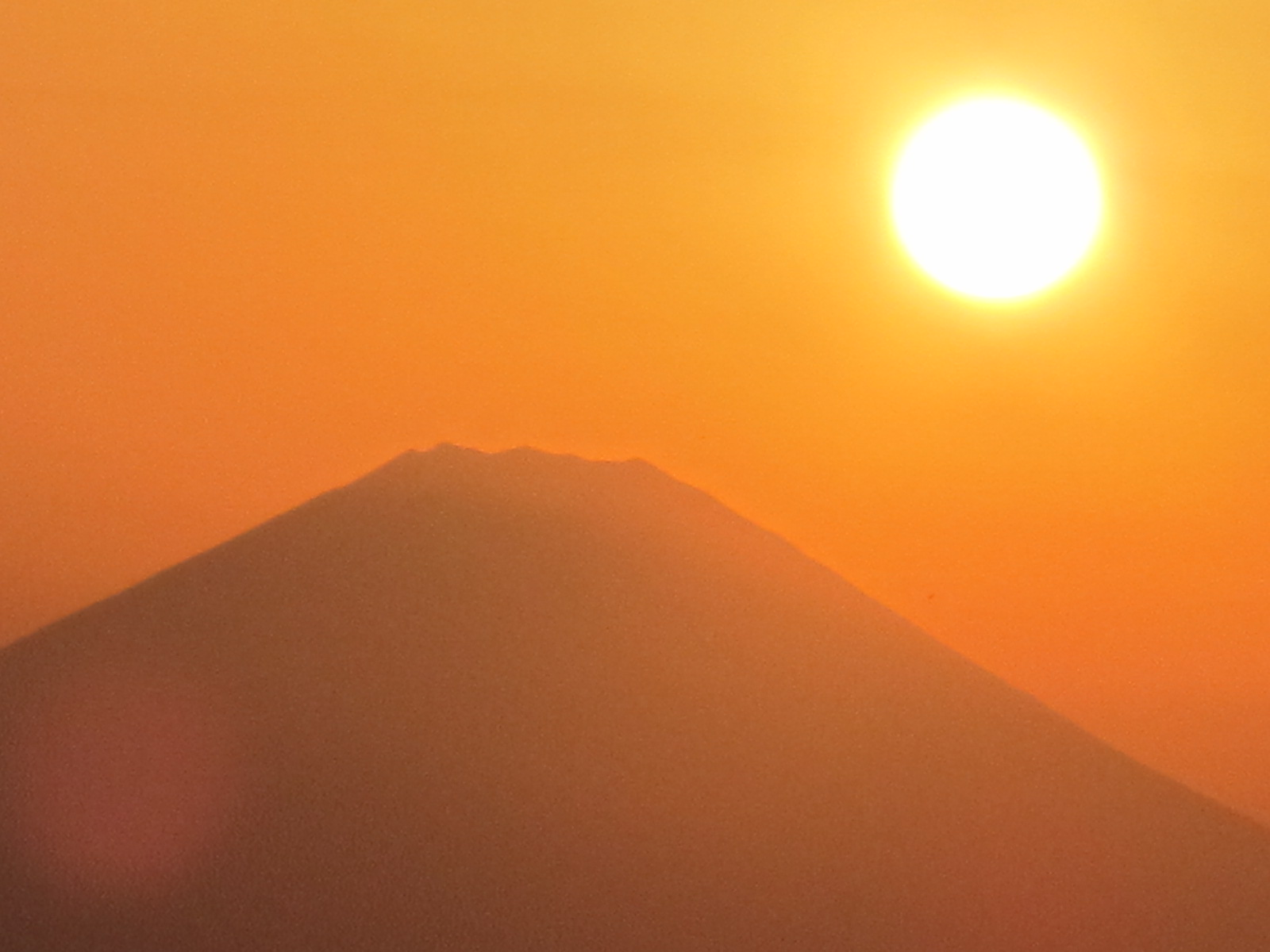 金色に耀く、ゴールデン富士・・・8_c0075701_21463962.jpg