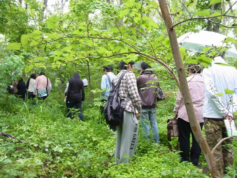 神戸から恵迪の森へ_c0025115_19493914.jpg