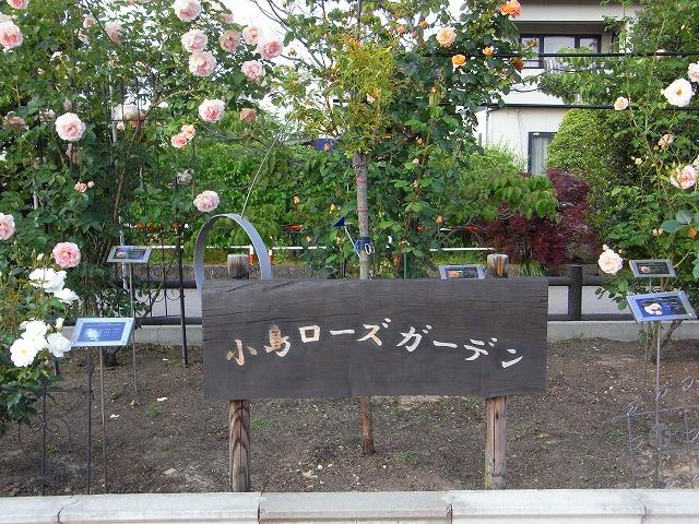 2012春いみずバラ祭り_c0194417_11331414.jpg
