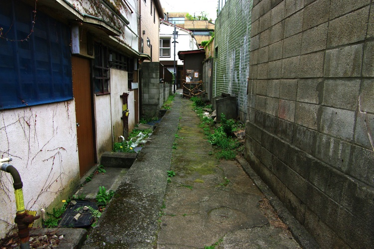 代々木界隈〜春の小川2_b0053019_21485434.jpg