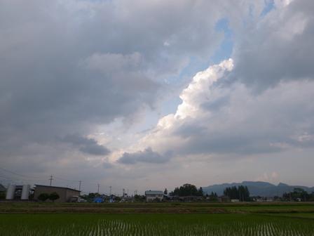 雨があがって_a0014840_2236583.jpg