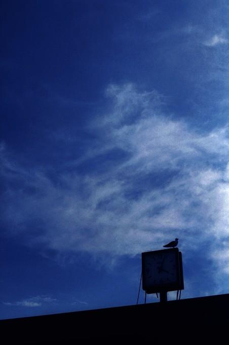 2012-6-2 孤独を力に変えて_c0136330_914129.jpg