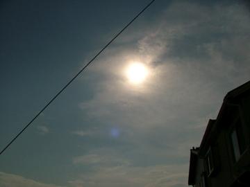 金環日食_c0206645_1733611.jpg
