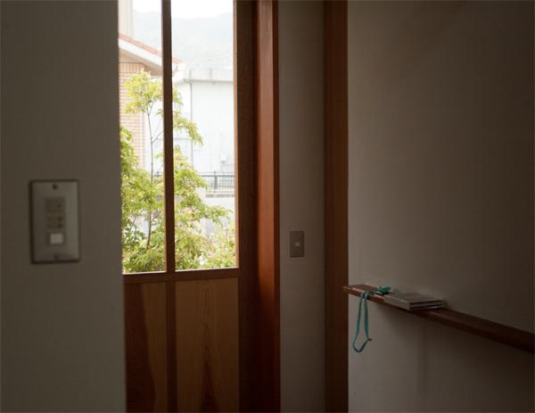 120602 玄関の緑_b0129659_5561357.jpg