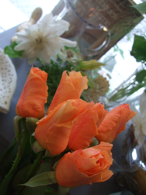 オークリーフ(今日おすすめのバラの花たち)_f0049672_1443135.jpg