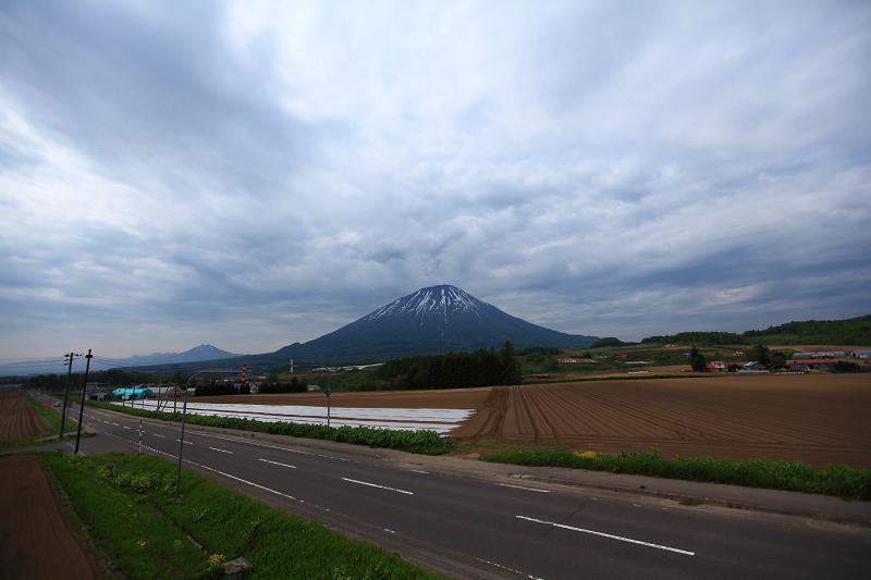 アートの旅 ニセコへ_a0160581_17265657.jpg