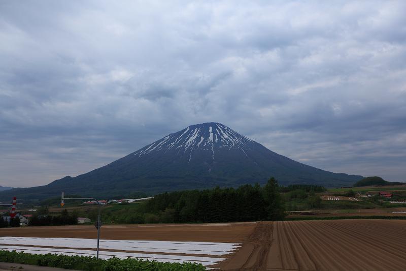 アートの旅 ニセコへ_a0160581_1727537.jpg