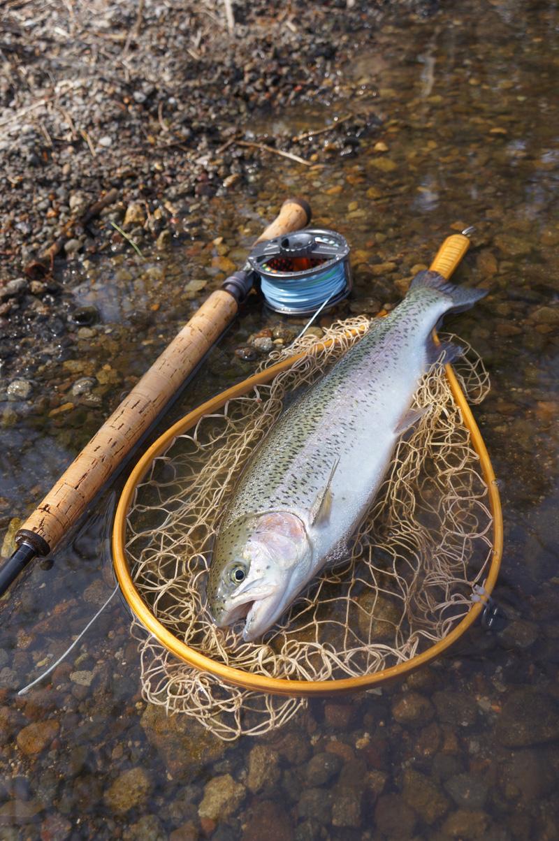 湯ノ湖でガッ釣り_c0095801_1049129.jpg