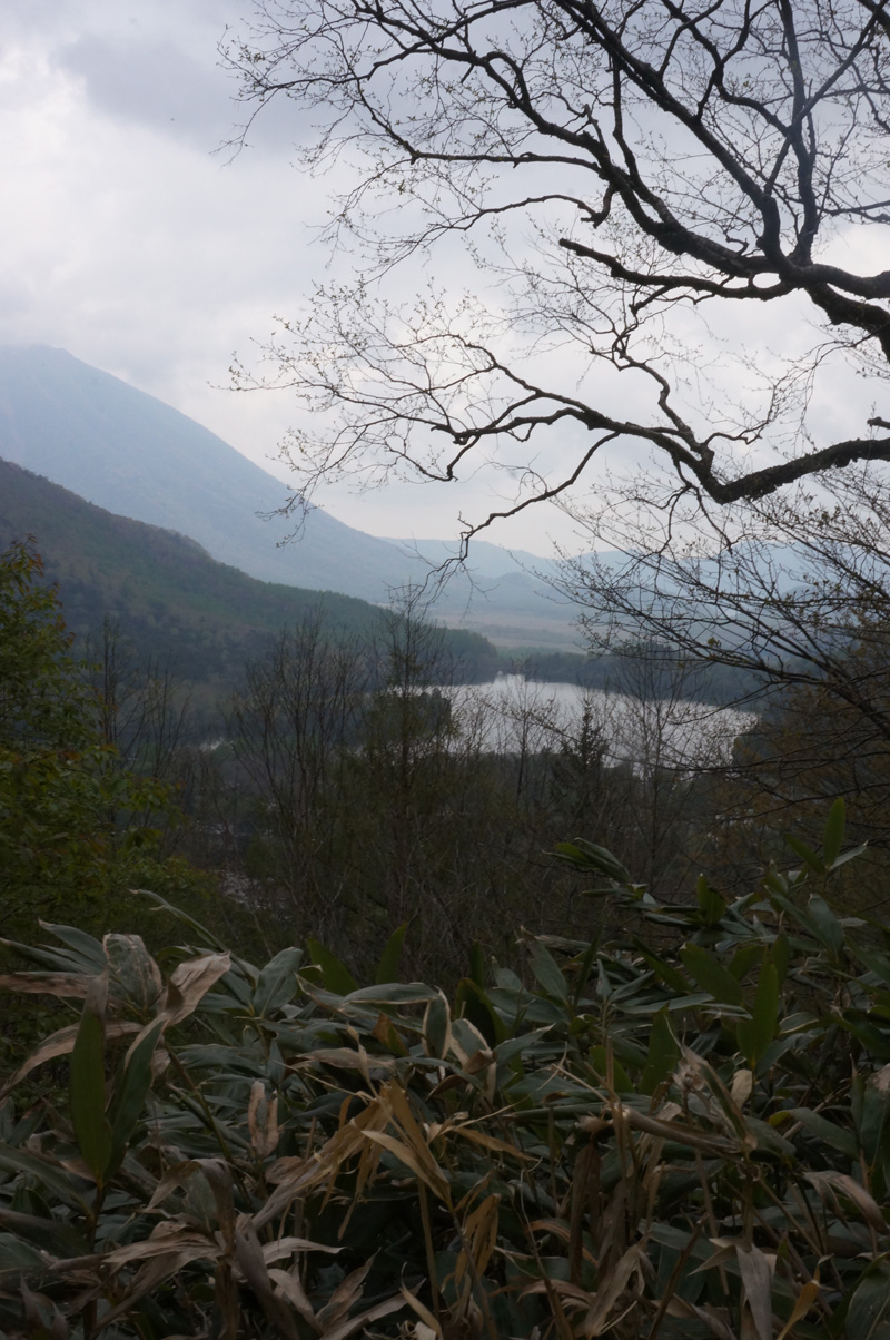 湯ノ湖でガッ釣り_c0095801_10492535.jpg