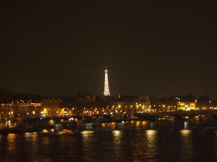 2012 2月 パリ  いつみてもこの夜景はいい〜_f0062122_1014818.jpg