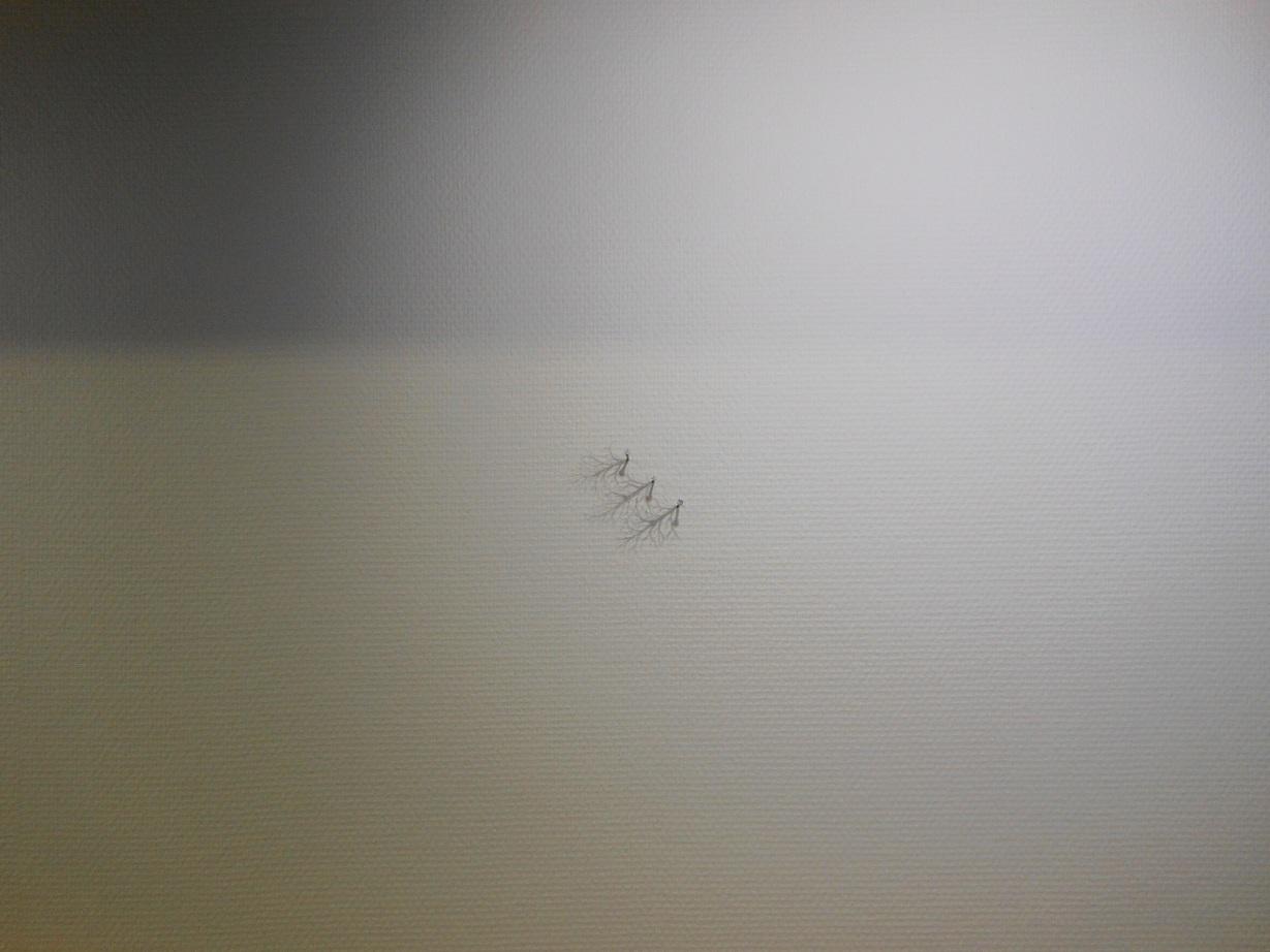 1783)①「日常の冒険 -日本の若手作家たち-(今村遼佑の場合) vol.3」 500m美術館 5月12日(土)~7月27日(金)_f0126829_10571796.jpg