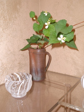 アキノヨーコガラス展- 3_b0132442_12282435.jpg